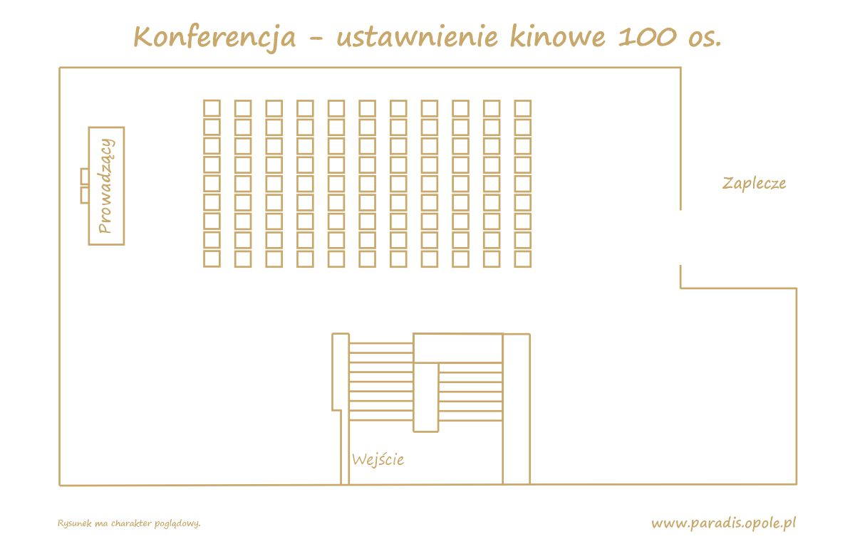Konferencja - ustawnienie kinowe 100 os